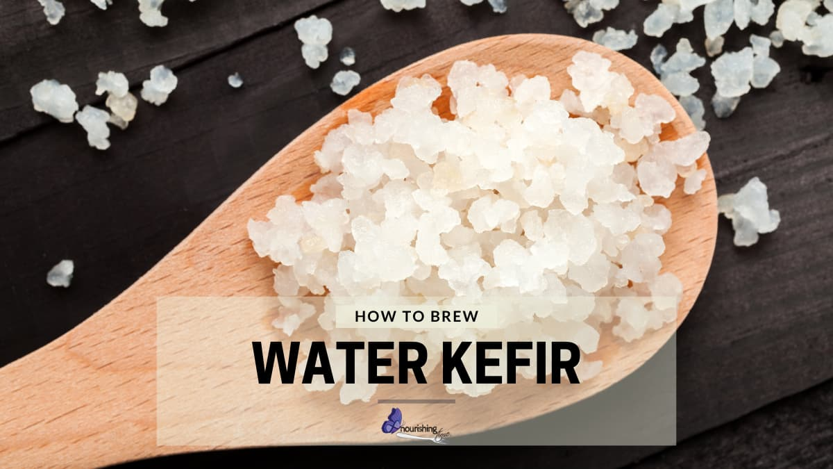 Wooden spoon with water kefir grains, text reads how to brew water kefir