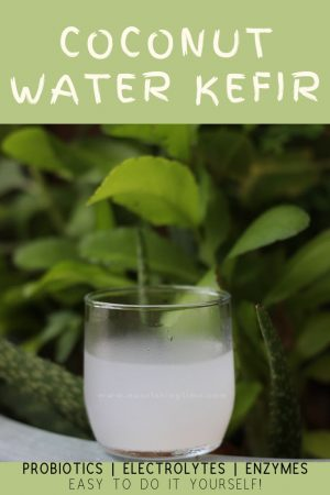 Coconut Water Kefir Benefits