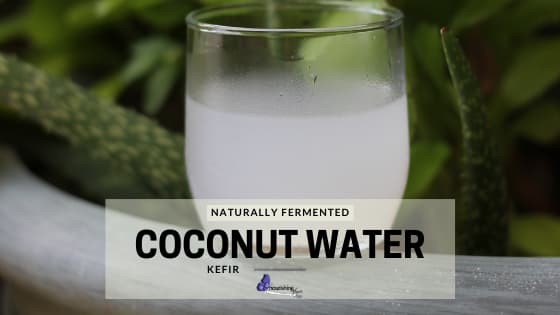 Naturally Fermented Coconut Water Kefir