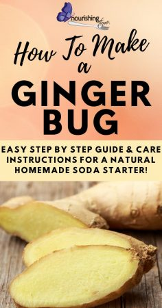 How To Make A Ginger Bug Pin