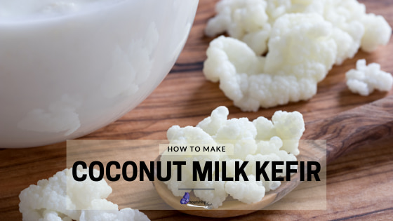 How to make coconut milk kefir with milk kefir grains
