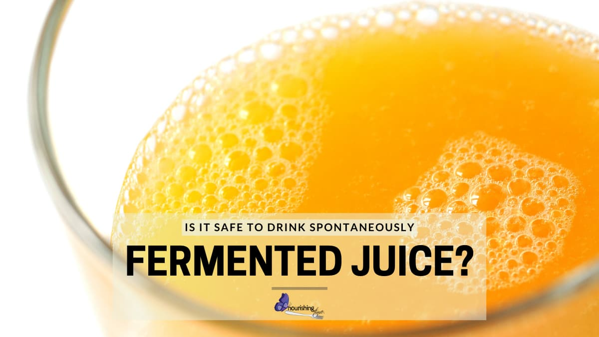 Are Spontaneously Fermented Juices Safe To Drink?